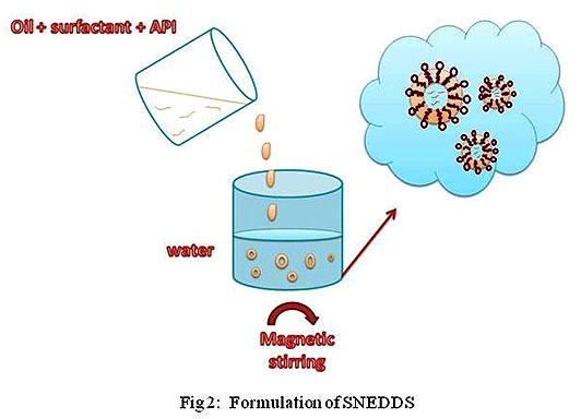 Self Nano Emulsifying Drug Delivery Systems for Oral