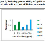 Figure 2: Reducing power ability of gallic acid and ethanolic extract of Ricinus communis.