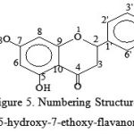 Figure 5: Numbering Structure of 5-hydroxy-7-ethoxy-flavanones
