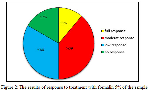 Comparison Between Efficacy of Formalin 5% Solution and Placebo in