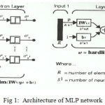 Figure 1: Architecture of MLP network