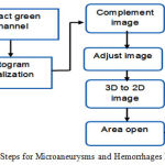 Figure 6: Steps for Microaneurysms and Hemorrhages Detection