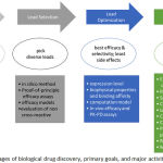 Figure 1: Stages of biological drug discovery, primary goals, and major activities
