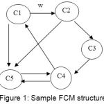 Figure 1: Sample FCM structure
