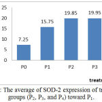 Figure 1: The average of SOD-2 expression of treatment groups (P2, P3, and P4) toward P1.