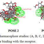 Figure 4: Common Feature Pharmacophore studies: (A, B, C, D) POSE 1,2,3,4 represents he different positions of ligands binding with the receptor.