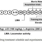 Figure 1: Drug treatment schedule and experimental protocol.
