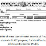 Figure 2: Results of mass spectrometer analysis of fraction 15 dentin gel sample shown in BLAST program, for identification of protein amino acid sequence (NCBI).