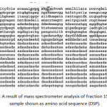 Figure 3: A result of mass spectrometer analysis of fraction 15 dentin gel sample shown as amino acid sequence (DSP).