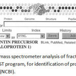 Figure 7: Results of mass spectrometer analysis of fraction 32 dentin gel sample shown in BLAST program, for identification of protein amino acid sequence (NCBI).
