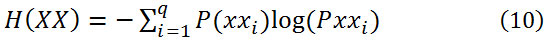 Equation (10)