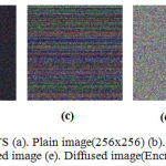 Figure 4: Encryption Results(a). Plain image(256x256) (b). Confused image (c). Permuted image (d). Bitxored image (e). Diffused image(Encrypted image).