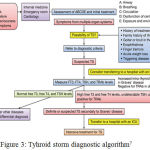 Figure 3: Tyhroid storm diagnostic algorithm7