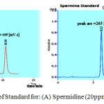 Figure 1: Chromatogram of Standard for: (A) Spermidine (20ppm), (B) Spermine (20ppm).
