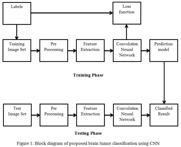 Brain Tumor Classification Using Convolutional Neural Networks
