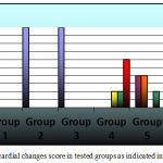 Figure 7: Myocardial changes score in tested groups as indicated in key figure.