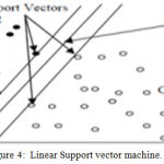 Figure 4: Linear Support vector machine.