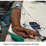 Figure 6: Extension movement of Limb.