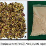 Figure 1a: Dried pomegranate pericarp;b: Pomegranate pericarp powder.
