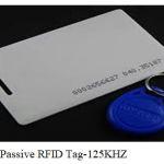Figure 1: Passive RFID Tag-125KHZ.