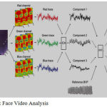 Figure 9: Face Video Analysis.