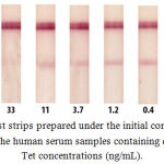 Figure 1: Test strips prepared under the initial conditions after testing the human serum samples containing different Tet concentrations (ng/mL).