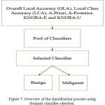 Figure 7: Overview of the classification process using dynamic classifier selection.