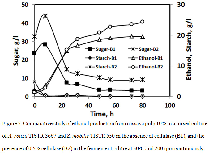Comparative Study of Ethanol Production from Cassava Pulp by